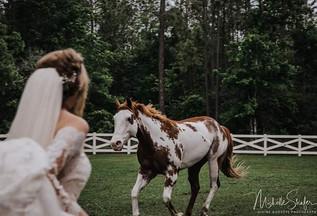 jana horse.jpg