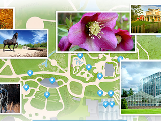 Meijer Gardens & Sculpture Park Visit