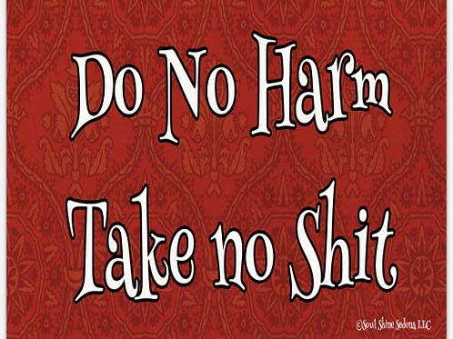 Do No Harm Take No Shit Bumper Sticker