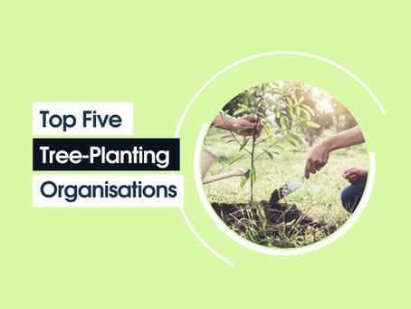 Top Five Tree-Planting Organisations