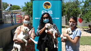FNB's support helps puppies like Lana