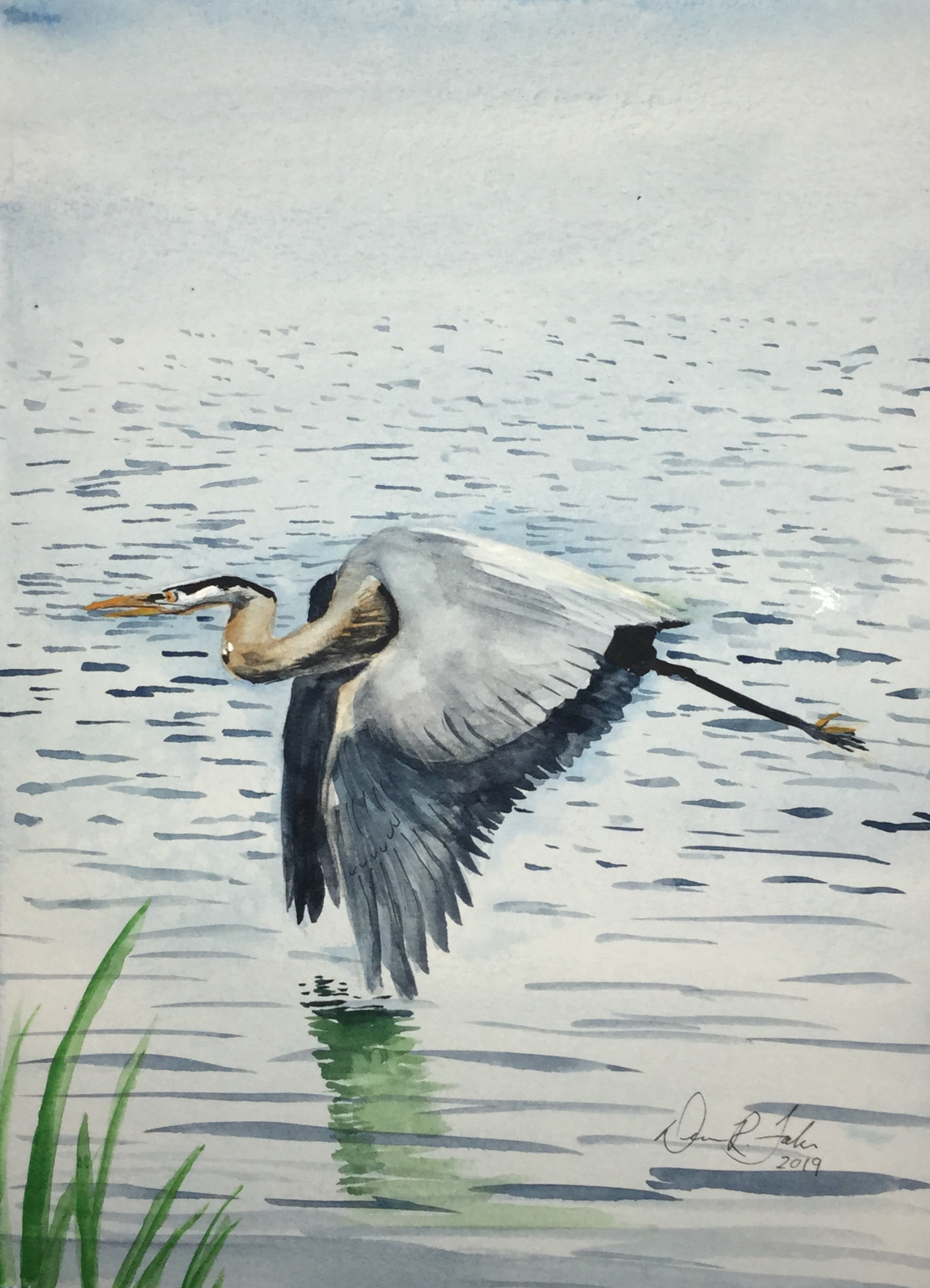#11 Heron Over Water