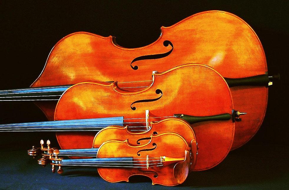 string instruments.jpg