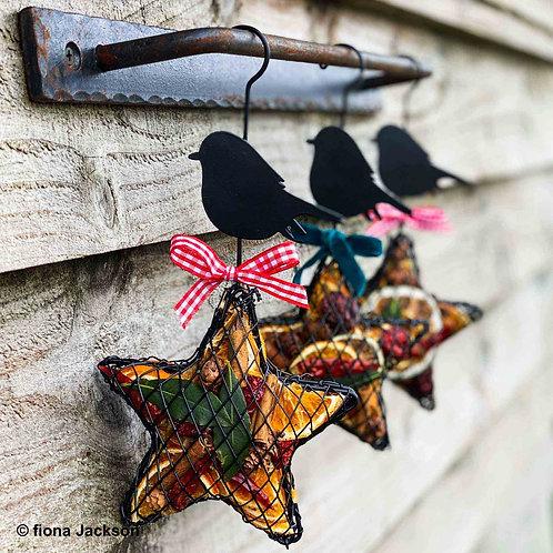 Robin Fruit Hanging Star Cage