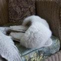 Alpaca Fur Slides 7-8