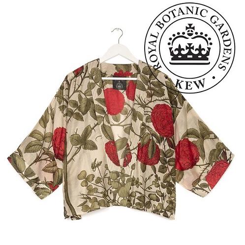 One Hundred Stars KEW Rosebush Red Kimono