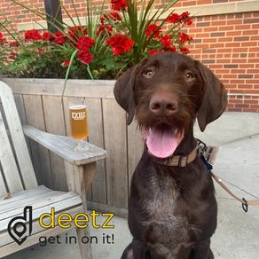 13 Dog-Friendly Patios in Des Moines