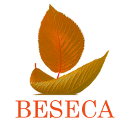 best logo7.png