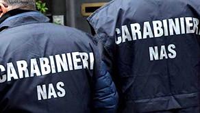 Cybercrime farmaceutico: 14 i siti oscurati dai Carabinieri NAS