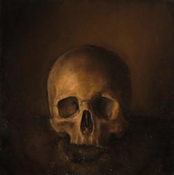 Study of a Human Skull