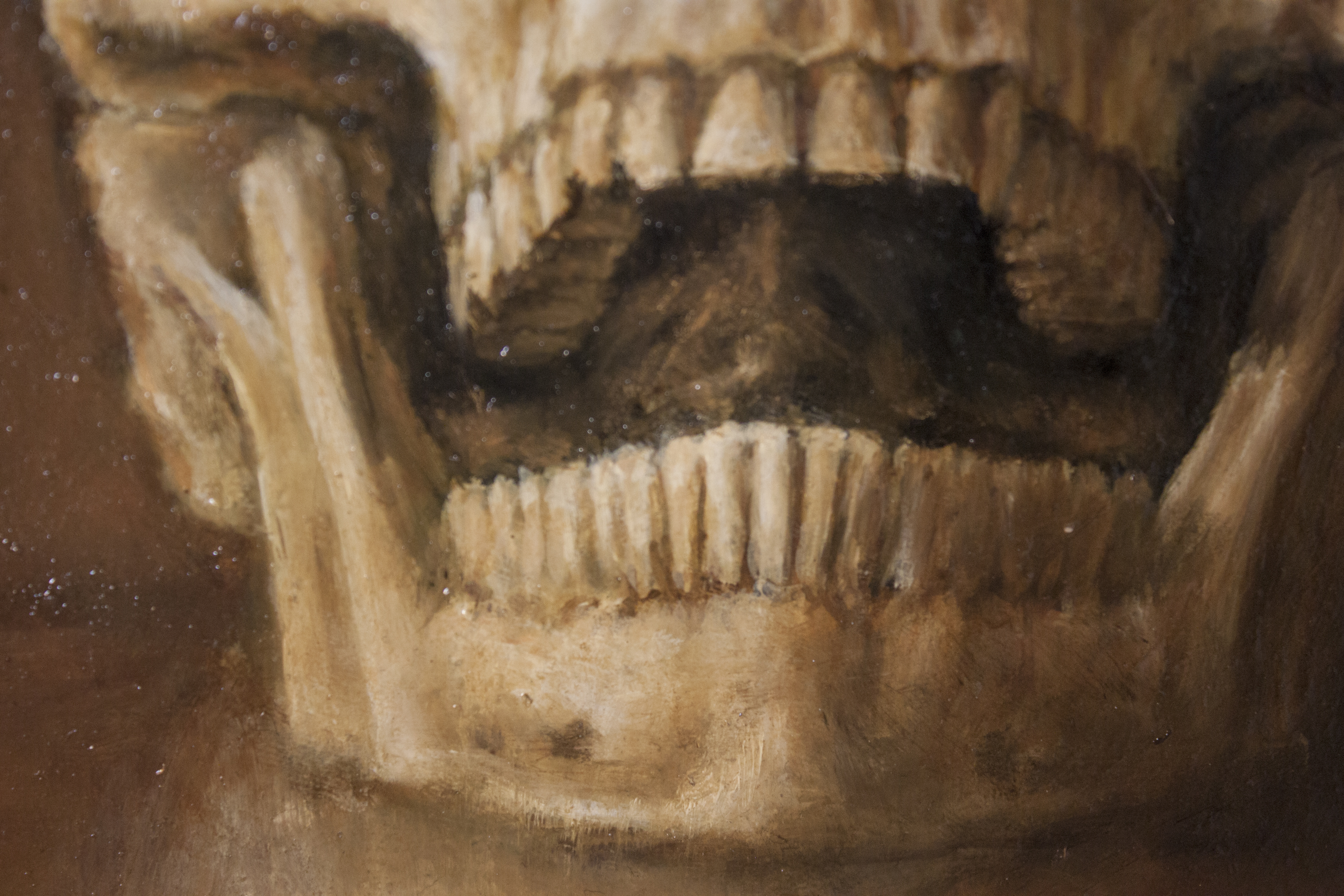 Study of a Skull (Detail)