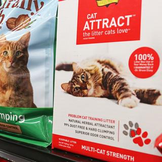 CatLitter.jpg