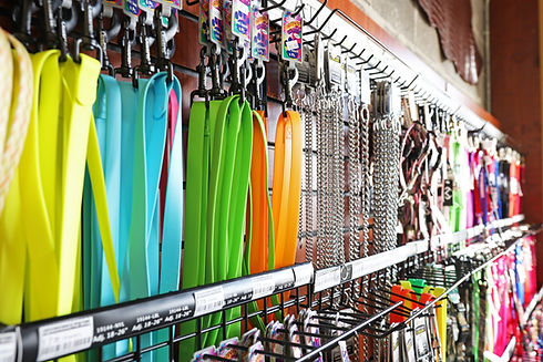 Various colorful dog leashes hanging on racks.