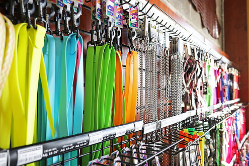 Colorful dog leashes hanging on racks.