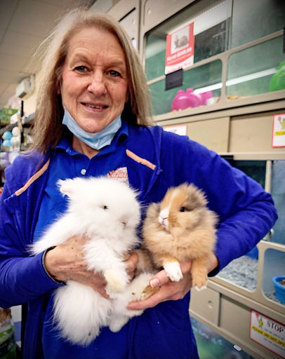 A woman holds two fluffy rabbits in a pet store.
