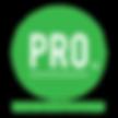 Pro auto new logo 2017.png