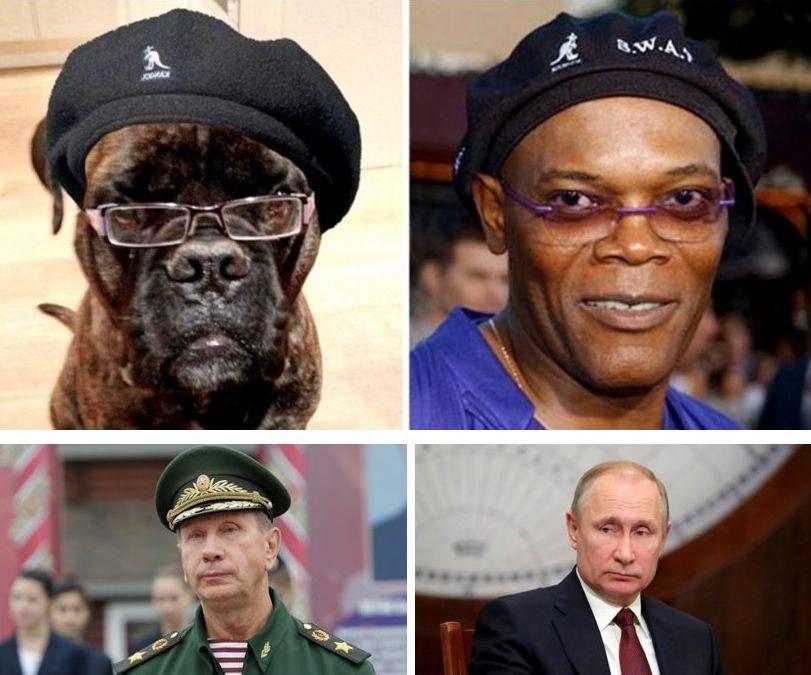 Putin Zolotov