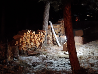 Gathering wood on a cold winters night!