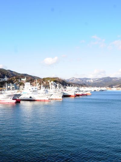 Kesennuma 気仙沼港