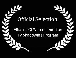 Official Selection AWD TV Shadowing Prog