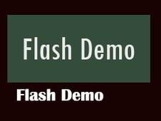 Flash Demo_from BigStar