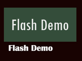 Flash Demo_from BigStar