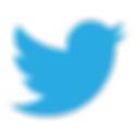twitter-logo-png-twitter-logo-vector-png