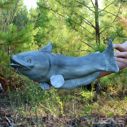 """Catfish Angler"" - Catfish Trophy"