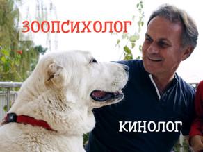 Отзыв пользователя Andrey Chernyavskiy