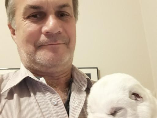 Собаки обладают интеллектом двухлетнего ребенка, - профессор Стэнли Корен.