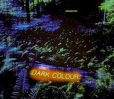 dark colour observer.jpg
