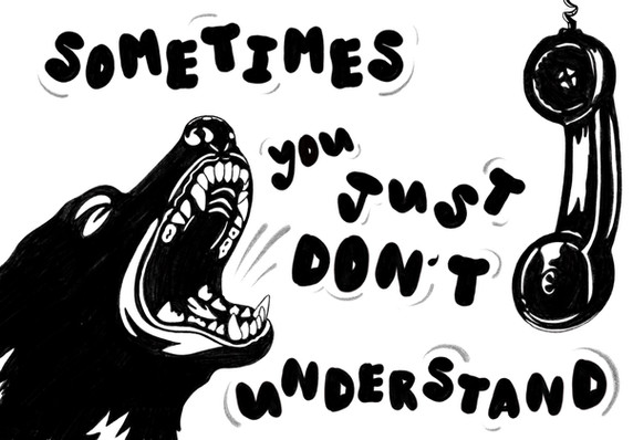 'Sometimes You Just Don't Understand'
