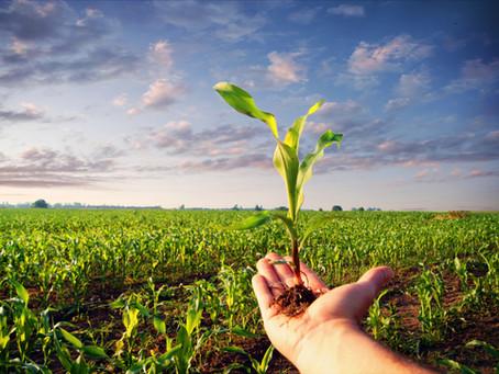 Hiszünk a fenntartható mezőgazdaságban