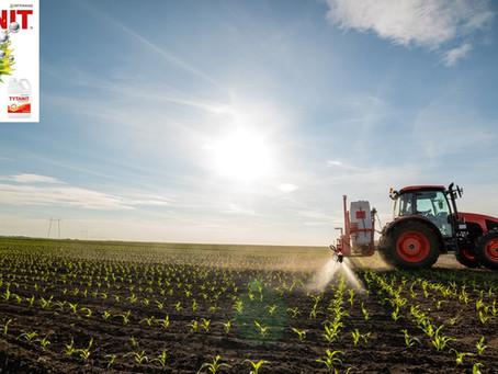 Fázik a kukorica, csak a TYTANIT® segíthet rajta!