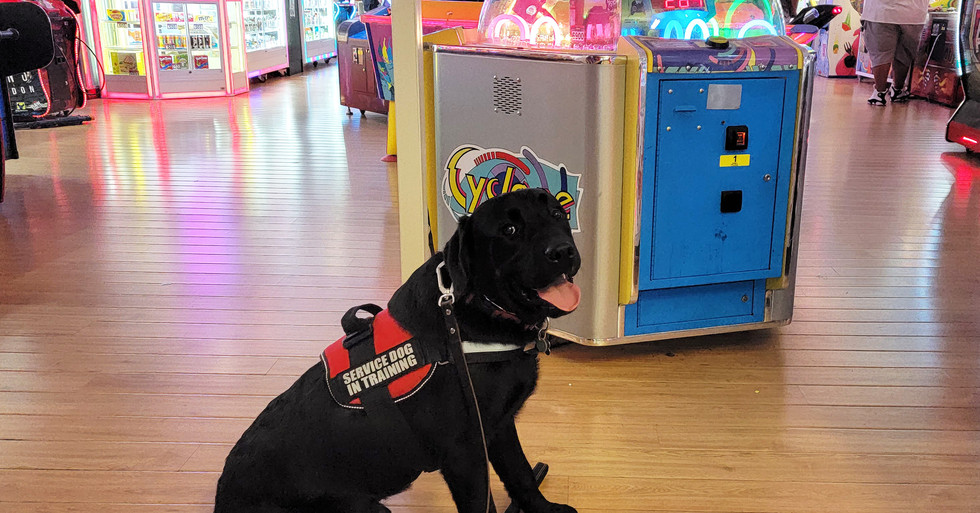 Rogan at the arcade in Cool Springs Mall
