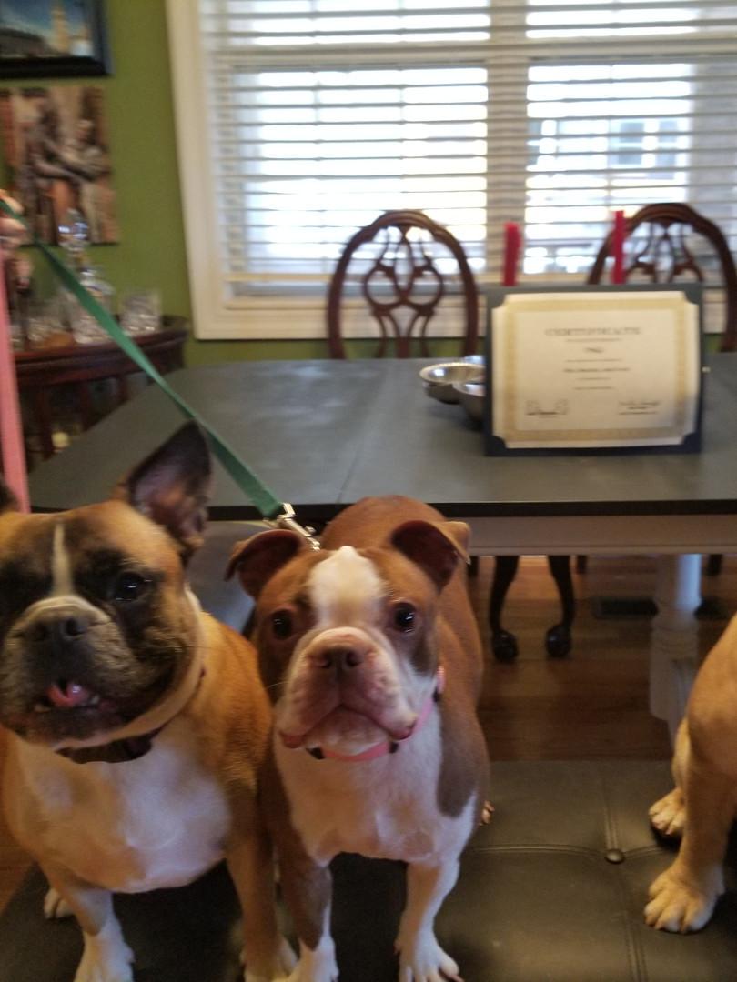 Faye, Maddie and Rex