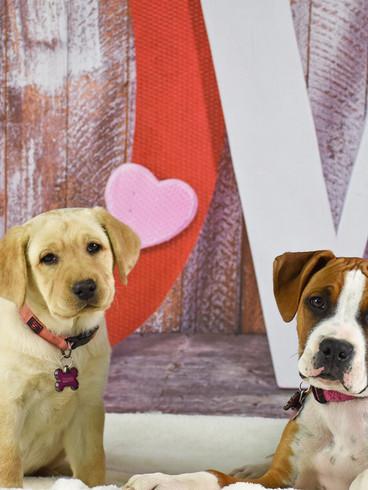 Quinn and Bonnie