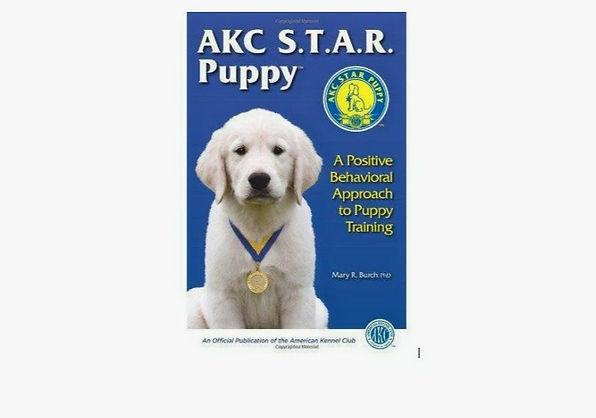 Puppy%20Star_edited.jpg
