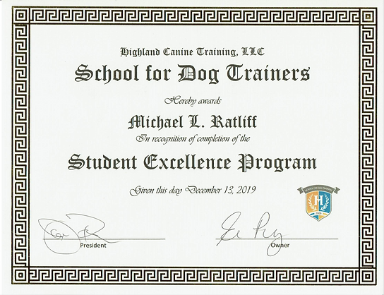 Student Excellence Cert.PNG