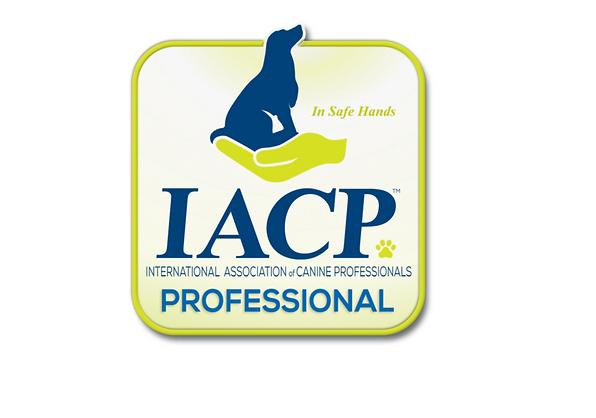 IACP Pro.PNG