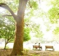 品川区 (目黒駅) ・月曜日の朝活 (朝の交流会・お茶会)