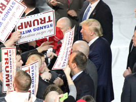 Lessons for Entrepreneurs from Trump's Political Ascendance