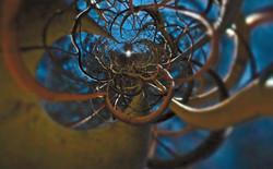 Curly Willow Vortex 2