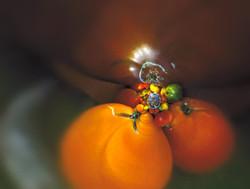 TomatoBowlVortex_1