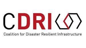 CDRI Logo.jpg