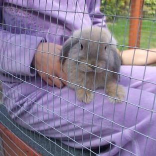 Rebeccas Photos 079.jpg
