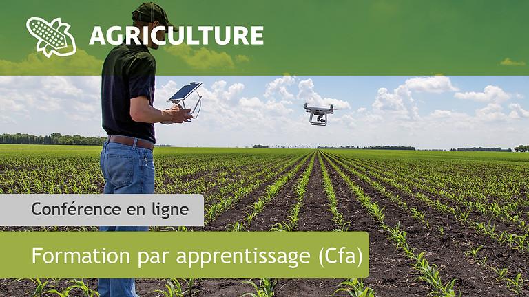 Licence pro Agronomie : Agriculture, Durabilité, Nouvelles Technologies (ADNT)