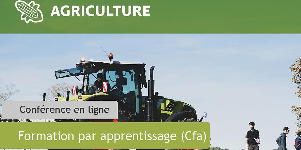 Bac pro Conduite et Gestion de l'Entreprise Agricole (CGEA)