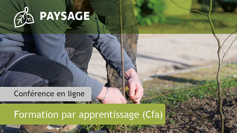 CAP agricole Jardinier Paysagiste (JP)