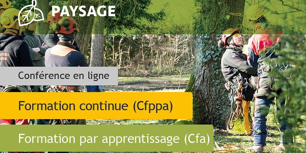 CS Arboriste Élagueur (AE)